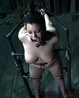 Dana Vixen Held Rigid