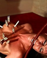 Clamps and lashes on sex parts